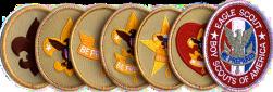 boy-scouts-of-america-bsa-brandon-byrge-brandon-d-byrge-brandonbyrge-volunteer-work-career-sales-selling-byrge-eagle-scout-eaglescout-b-s-a-bsa-9